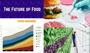 featured image with future foods